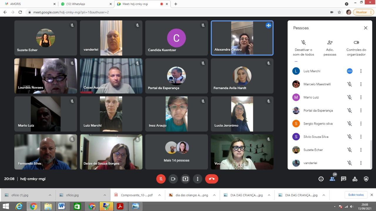 Foto da reunião online